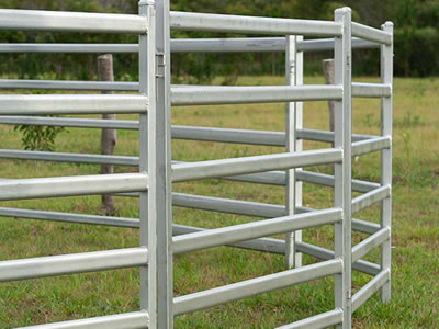 Oval tube corral panel fence stands on the lawn. The panels with square frame and six square tubes.